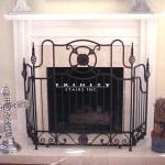 Fireplace Screen #2