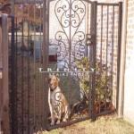 Exterior Iron Gate #29